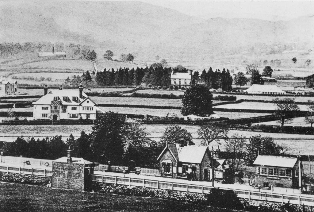 Llanuwchllyn Station, c.1920.jpg